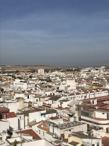 Rooftops in Seville